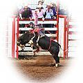 Bull Riding by Steven Baier