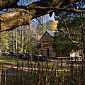 Cades Cove Cabin  by Douglas Barnett