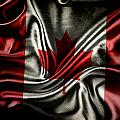 Canadian Flag  by Les Cunliffe