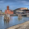 Cardiff Bay by Steve Purnell