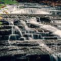 Cascadilla Gorge by Brad Marzolf Photography