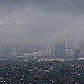 Century City, Wilshire Corridor, Los by Panoramic Images