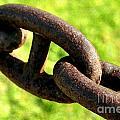 Chain by Henrik Lehnerer