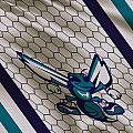 Charlotte Hornets Uniform by Joe Hamilton