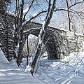 Cheshire Railroad Bridge by Shaundi Kane