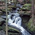 Chesterfield Gorge by Catherine Gagne