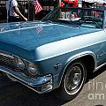 Chevrolet by Carol Ailles