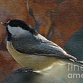 Chickadee In Autumn by Janette Boyd
