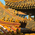 China Forbidden City Roof Decoration by Sebastian Musial