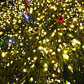 Christmas Tree Ornaments Faneuil Hall Tree Boston by Toby McGuire