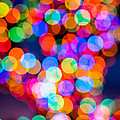 Christmas Lights by David Kay