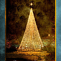 Christmas Tree In The City by Cindy Singleton