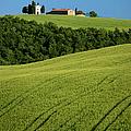 Church In The Field by Brian Jannsen