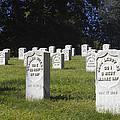 Civil War Dead At Arlington by Paul W Faust -  Impressions of Light