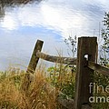 Cloud Reflections by Deborah Benoit