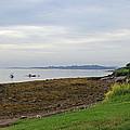 Coastal Maine by Becca Brann