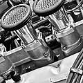 Cobra Engine by Jill Reger