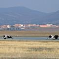 Common Cranes At Gallocanta Lagoon by David Santiago Garcia