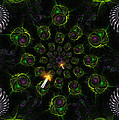 Cosmic Embryos by Shawn Dall