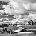 Country Living Bw by Steve Harrington