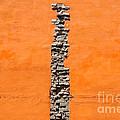 Crack Of Bricks In Orange Wall by Eddy Galeotti