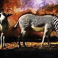 Creation Zebra by Diane Dugas