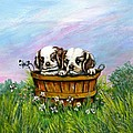 Curious Little Buddies.  by Richard Brooks