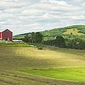 Cutting Hay In Summer On Maine Farm by Keith Webber Jr
