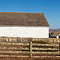 Dairy Buildings At Historic Pierce by Panoramic Images