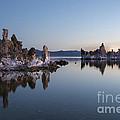 Dawn On Mono Lake by Sandra Bronstein