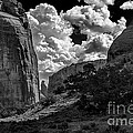 Deep In Canyon De Chelly by Bob and Nadine Johnston