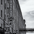 Dempseys Brew Pub by Susan Candelario