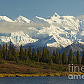 Denali National Park by John Shaw