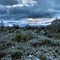 Desert Sunrise by Stephen  Vecchiotti