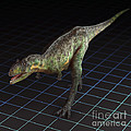 Dinosaur Aucasaurus by Science Picture Co