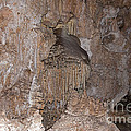 Dolls Theater Carlsbad Caverns National Park by Fred Stearns