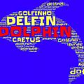 Dolphin Word Cloud by Bruce Nutting