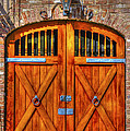 Doors Of Charleston by Dale Powell