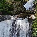 Dukes Creek Falls by Tara Potts