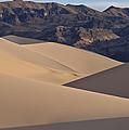 Dune Glow by Art Morgan