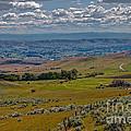 East End Of Emmett Valley by Robert Bales
