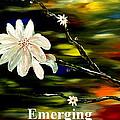 Emerging by Mark Moore