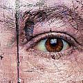 Eye On Environment by Paul Fell