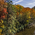 Fall Along The Linville River by Lynn Bauer