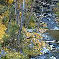Fall River by Guido Montanes Castillo