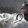 Fat Tire Bike by Ben Girardi