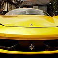 Ferrari by Linda Freebury