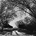 Film Noir Burt Lancaster Robert Siodmak The Killers 1946 Farm House Near Aberdeen Sd 1965 by David Lee Guss