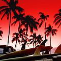 Fins N' Palms by Sean Davey