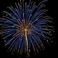 Fireworks Bursts Colors And Shapes by SC Heffner